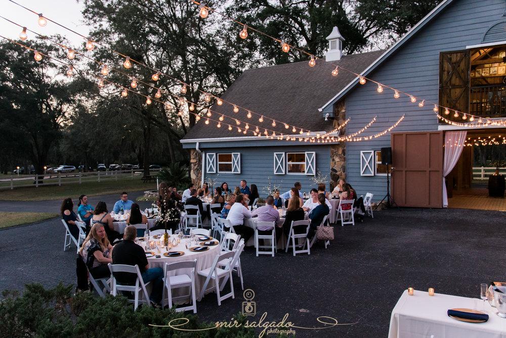 The-Lange-farm-wedding, Tampa-wedding-photographer