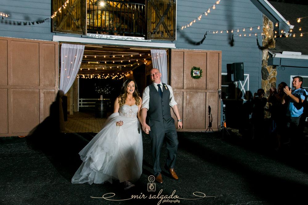 The-Lange-farm-wedding-reception, Tampa-photographer
