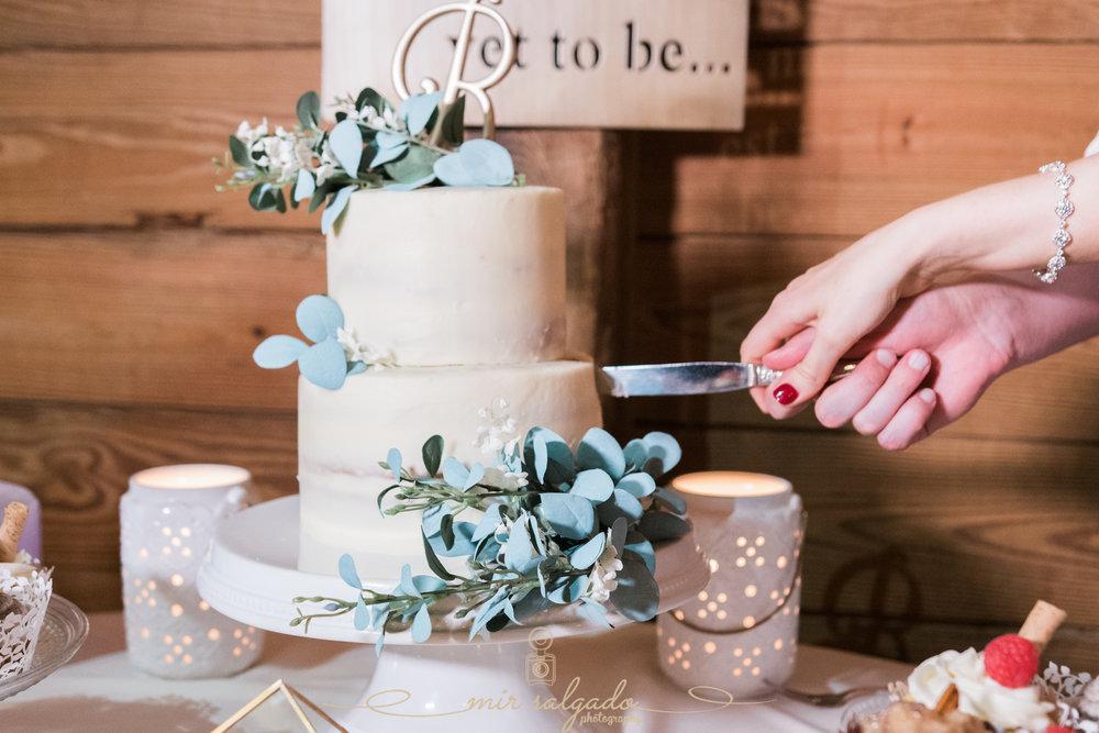 wedding-cake-photo, Tampa-wedding-cake-photo