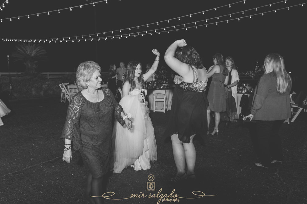 The-Lange-farm-wedding-photo, Tampa-wedding