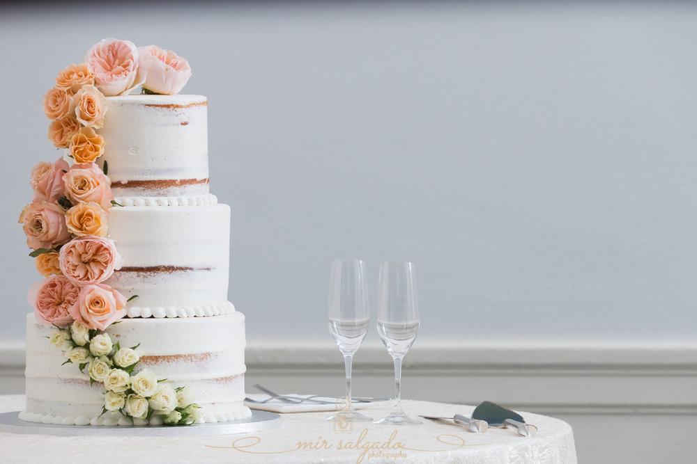 Tampa-wedding-cake, Tampa-wedding-photographer
