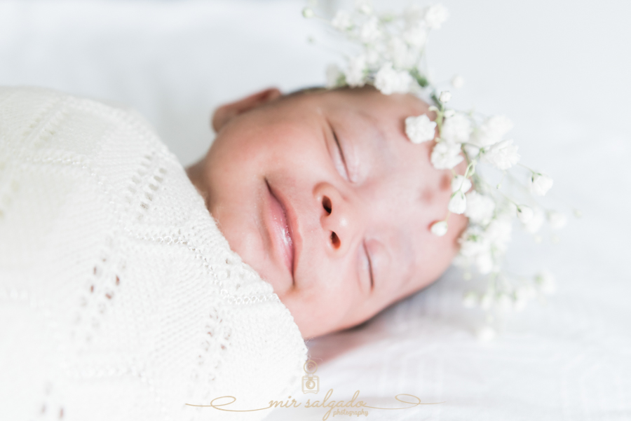 new-born-baby, Tampa-photography, tampa-photographer, family-session