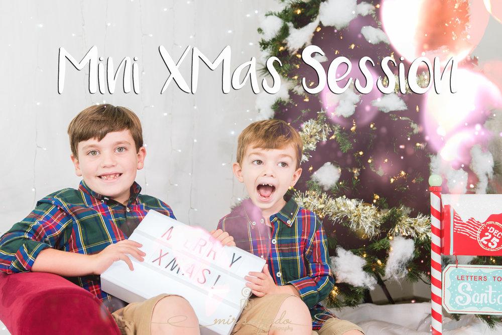 Mini-xmas-session, tampa-mini-xmas-session, tampa-christmas-photographers-christmas photographers