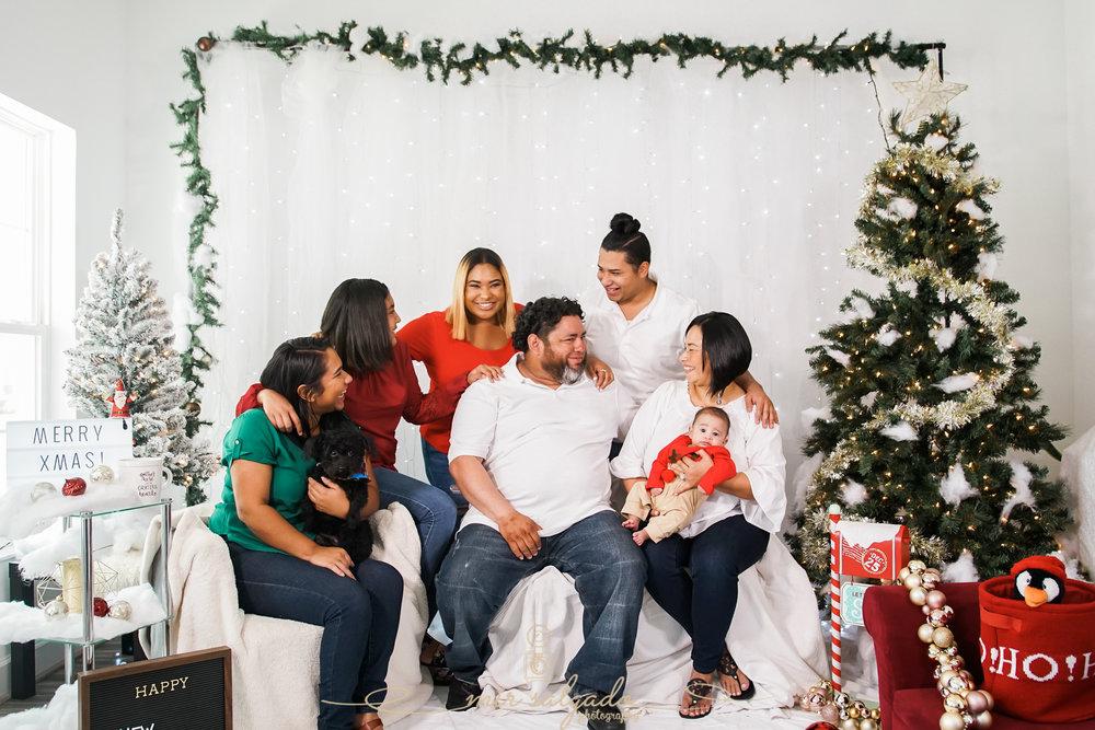 blended-family-photoshoot-tampa, tampa-animal-friendly-photographers, big-family-christmas-shoots, tampa-christmas-family-portraits