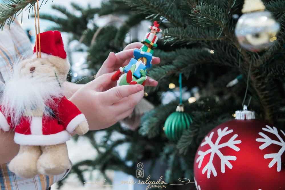 christmas-photographer, tampa-christmas-photographer, tampa-family-photographer