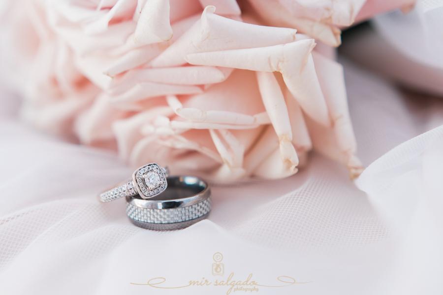 Ring-photo, wedding-photographer, Tampa-wedding, Florida-wedding-photographer