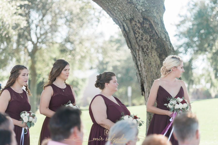 bridesmaids-photo, Brandeont-wedding-photo