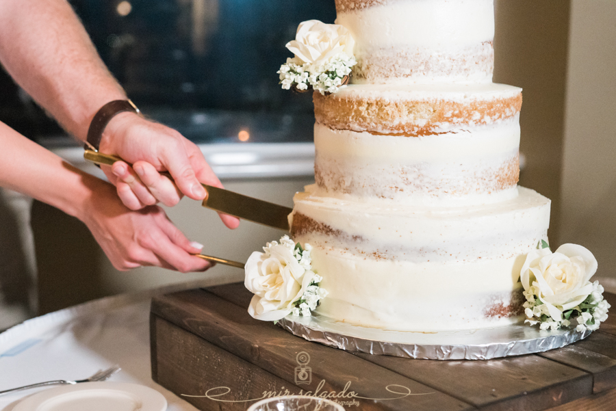 Bradenton-reception, cutting-cake-photo