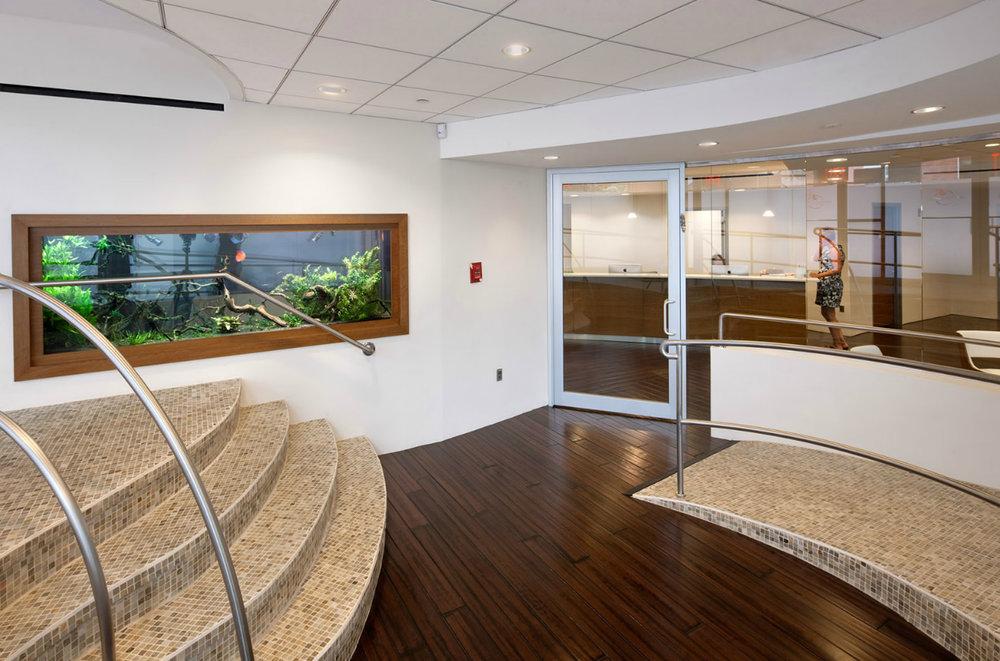 large-wall-office-aquarium.jpg