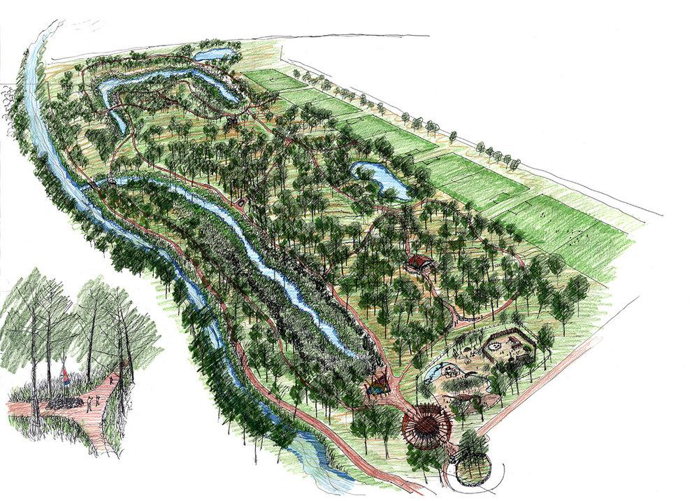 Eco-Fit Park Fountian Creek Corridor Restoration.jpg