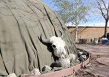 Buffalo skull leaning against VA Center sweat lodge, Photo by Taki Telonidis