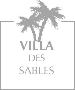 palmiers logo villa