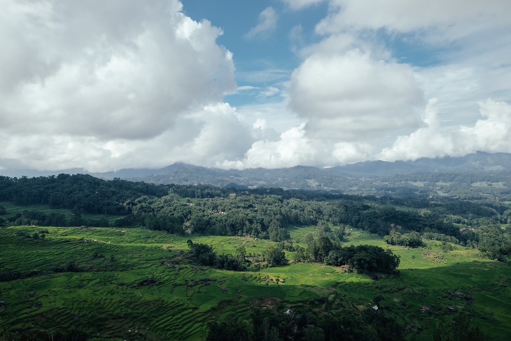 Toraja from Batu Tumanga