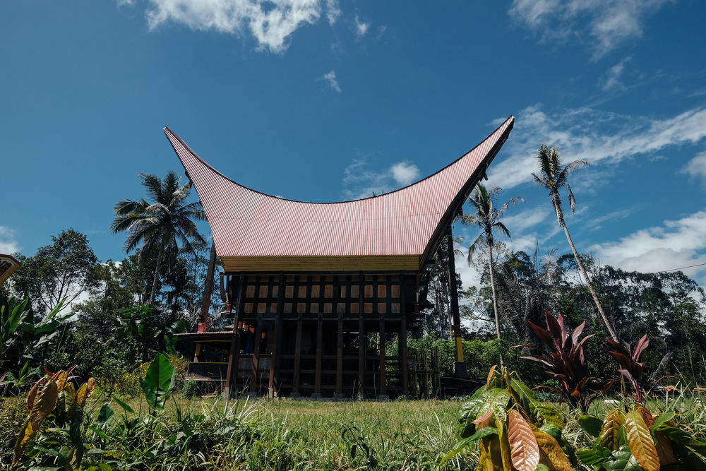 A typical traditional house in Toraja. The curves are symbolic of a buffalo's horns, and allows one to slide up, or down, from heaven.