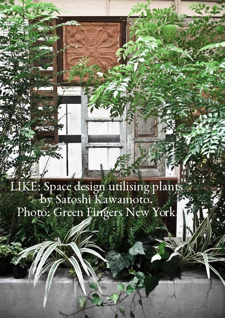 Green Fingers NYC.jpg