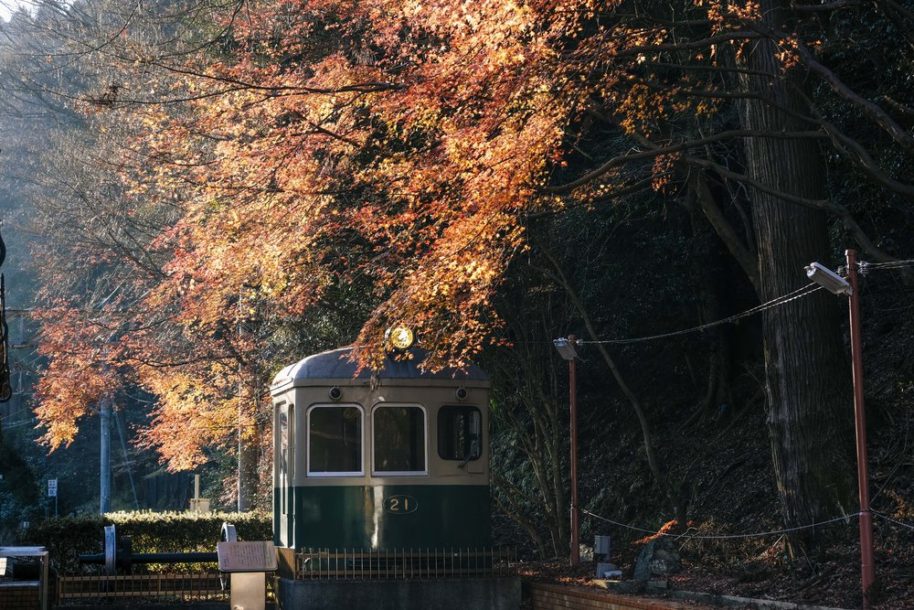 Late, late autumn leaves make a pretty picture at Kibune station.