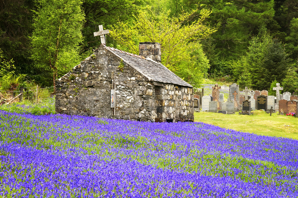 This little kirk in the neighbouring town to the village of Glen Coe was a place that cropped up every year because of its incredible bluebell display. Last year I was finally able to make a stop at the famed church and photograph the spectacular bluebells.
