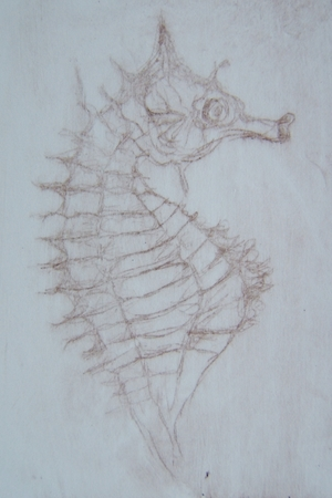seahorse+-+embroidered+prints+015.jpg
