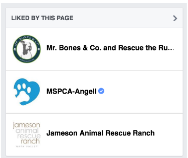 YOU CAN CHANGE UP HOW PAGES YOU HAVE LIKED APPEAR ON YOUR OWN RESCUE PAGE