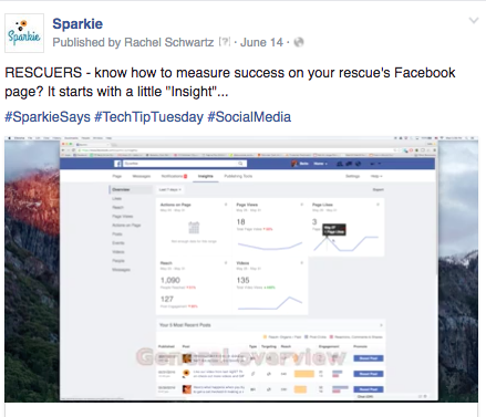 In this post on Facebook we used our own hashtag, #SparkieSays, as well as 2 more that related to the content we were publishing that day