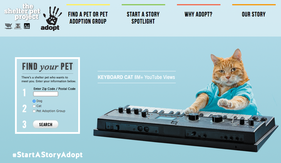 Betting on the rise of pet influencers Maddie's Fund started the Shelter Pet Project, aimed at getting pet owners to share their awesome experiences being rescue mom and dad