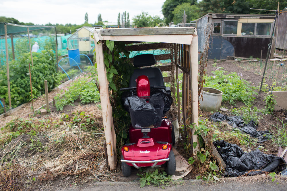 BLACK COUNTRY ALLOTMENTS -