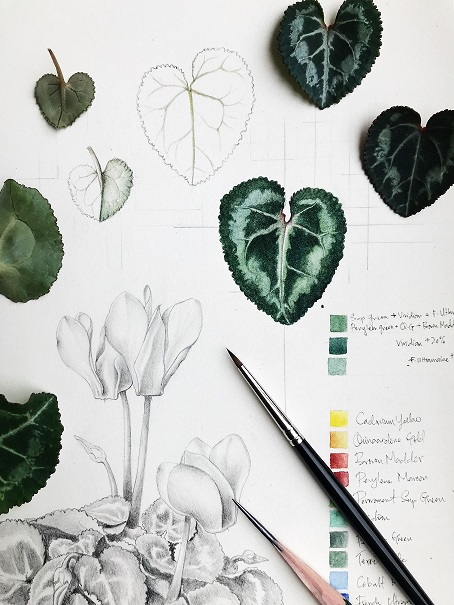 New in 2018 March-April  4-Week Course:  Botanical Art In Watercolour & Mixed Media With Lucinda Law - 17 and 31 March, 7 and 14 April 2018.