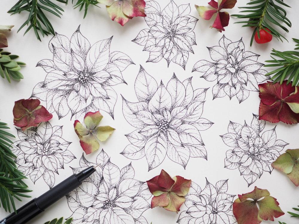 Poinsettia Dreams - Art & Tea Christmas Workshop at Pollen