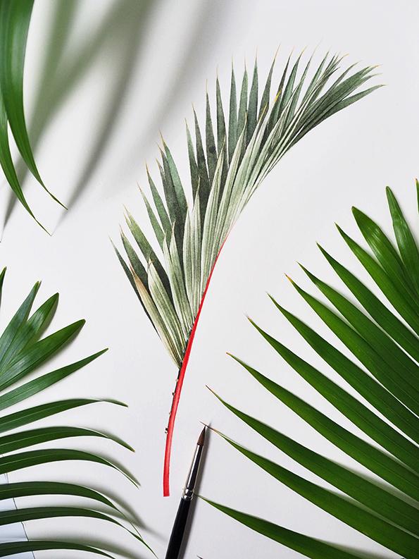 palms CAG.jpg