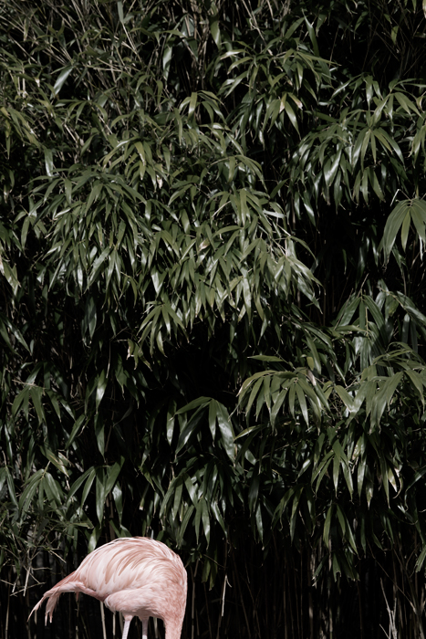 15-04-20-Tierpark_0485.jpg