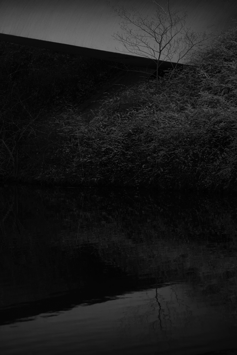 2015-01-01-Park_0030.jpg