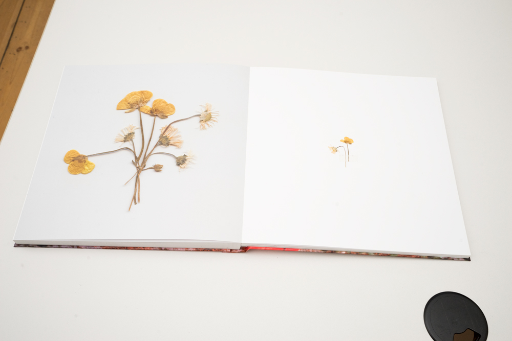 Buch-Fünf_0017.jpg