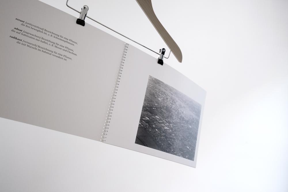 17-03-29-Buch-Vier_0082.jpg
