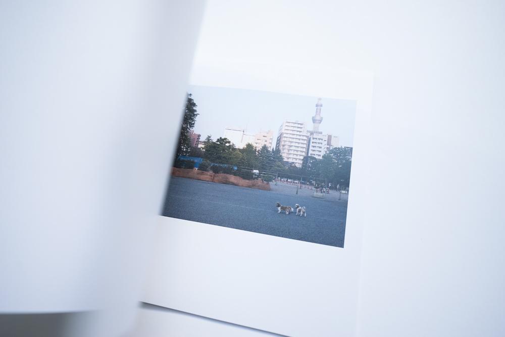 16-10-04-Buch-Drei_0055.jpg