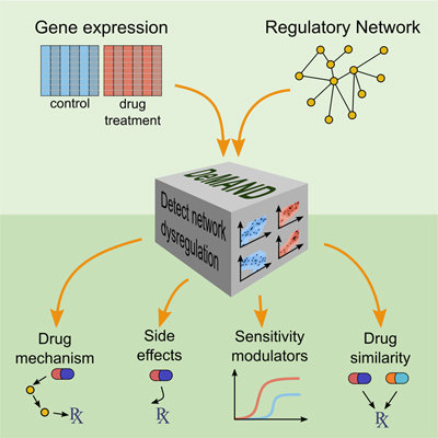 By analyzing drug-induced changes in disease-specific patterns of gene expression, a new algorithm called DeMAND identifies the genes involved in implementing a drug's effects. The method could help predict undesirable off-target interactions, suggest ways of regulating a drug's activity, and identify novel therapeutic uses for FDA-approved drugs, three critical challenges in drug development.