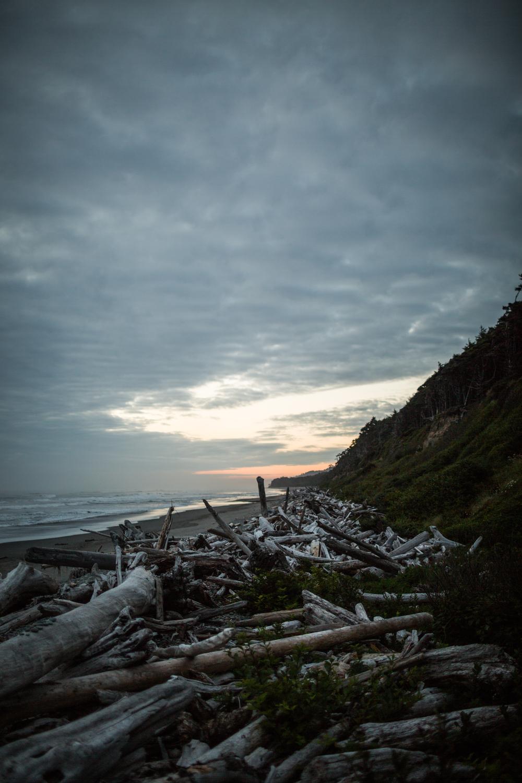 Seattle-41.jpg