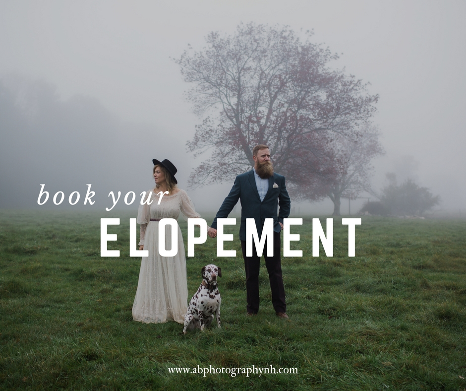 The Elopement Collection  -  $1050       -     - 3 hours of coverage                        - at least 150 high resolution images delivered via online web gallery    - 1 - 8x10 print of your choice