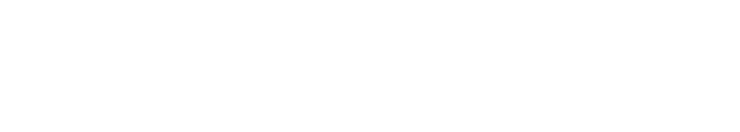 the energy manager