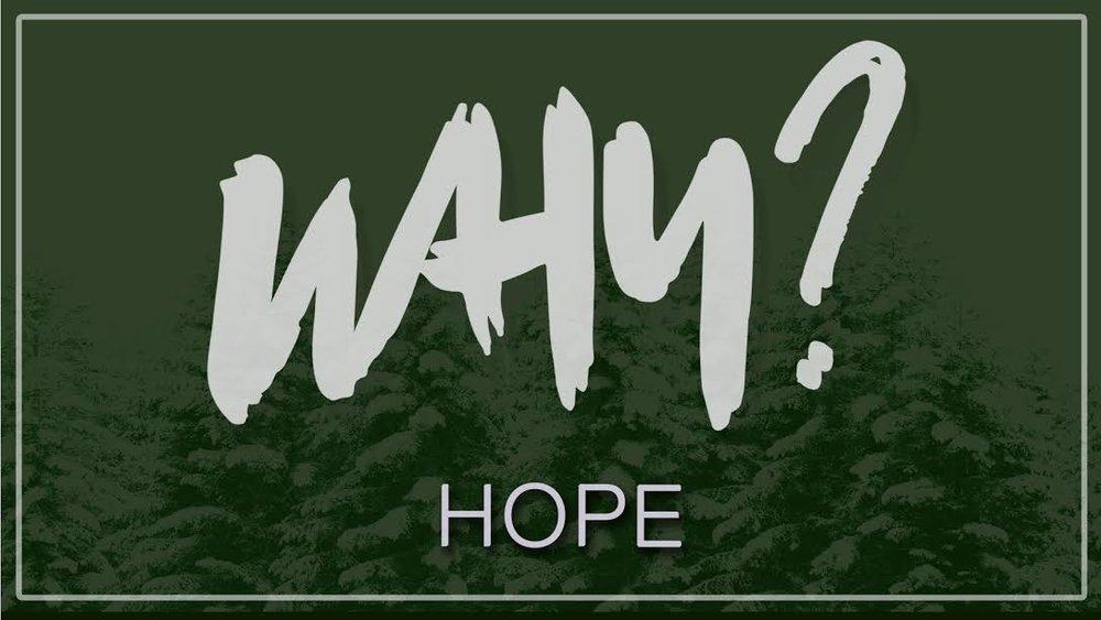 Why Hope.jpg