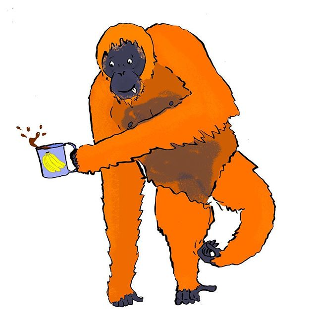 Been off the radar lately - way too much on my plate, deadlines looming and unlike this guy I've no time for a good scratch and a cuppa... . . . #orangutan #orangutans #wildlife #nature #drawing #cuppa #bananas #ink #orange #illustration #inking #tea #scratch #hairy #ape #character #kidlitart #childrensbookillustration #wip #deadlines #stressed #notenoughtime #monkey #opps