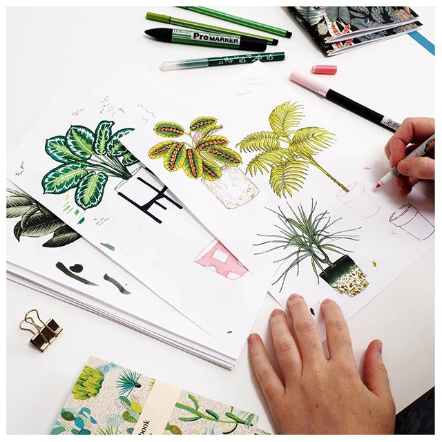 Artist Jaqueline Colley hard at work creating some botanical masterpieces! . . . #plants #botanical #drawing #wip #studio #artiststudio #markers #plant #illustrator #printmaker #houseplant #meetthemaker #printmaking #illustration #gallery #artist #artwork #handprinted #paper #drawing #brixton #southlondon #art #studio73 #studio73art #brixtonvillage #shopindependent #print