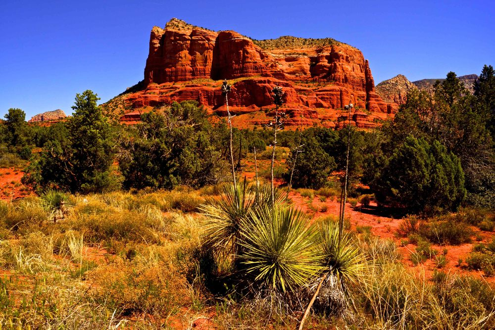 Bell Rock, Sedona, April 2014