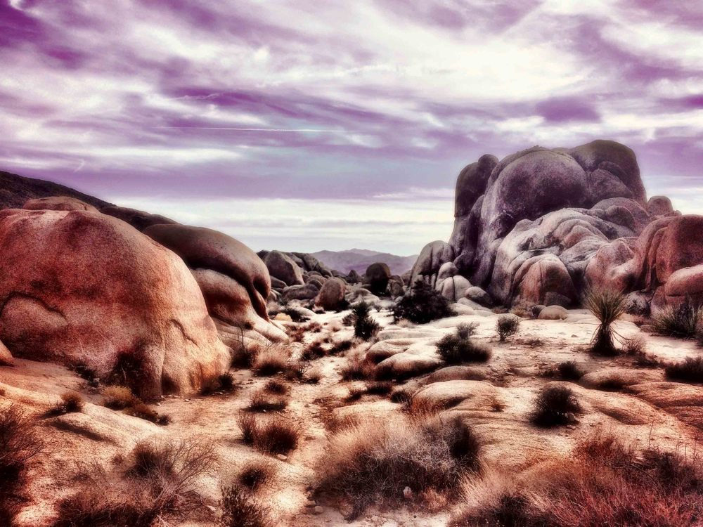 Joshua Tree National Park, California, December 2015