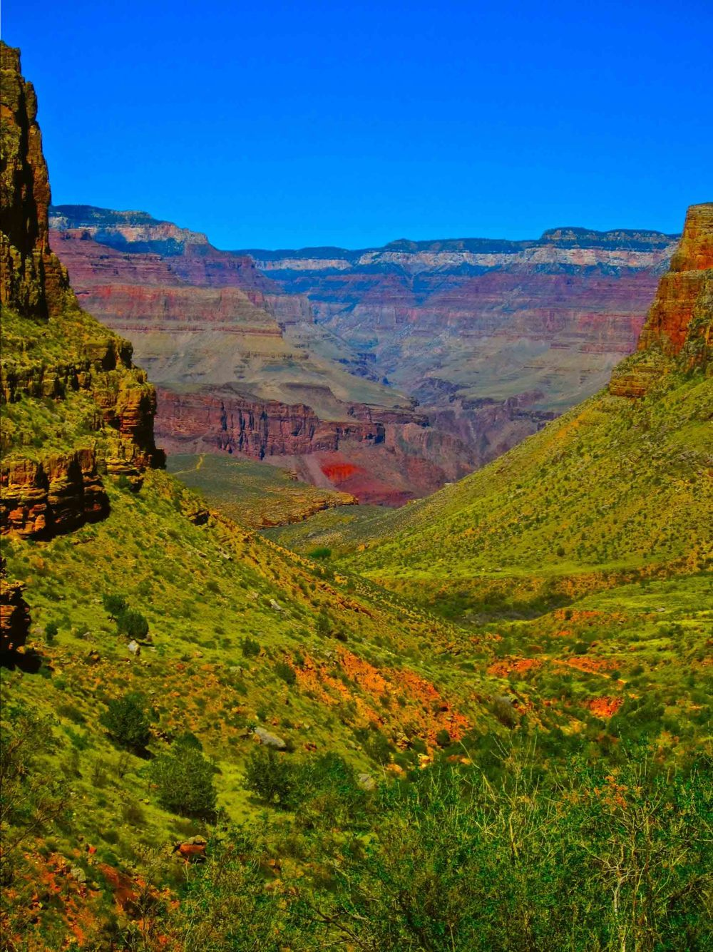 Grand Canyon, Bright Angel Trail, April 2012