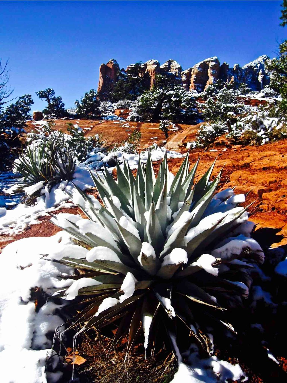 Soldiers' Pass, Sedona, Arizona, January 2011 Soldiers' Pass, Sedona, Arizona, January 2011