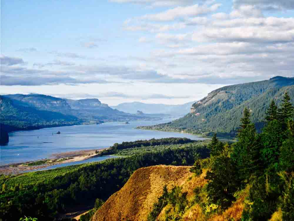 Columbia River Gorge, Oregon, July 2008