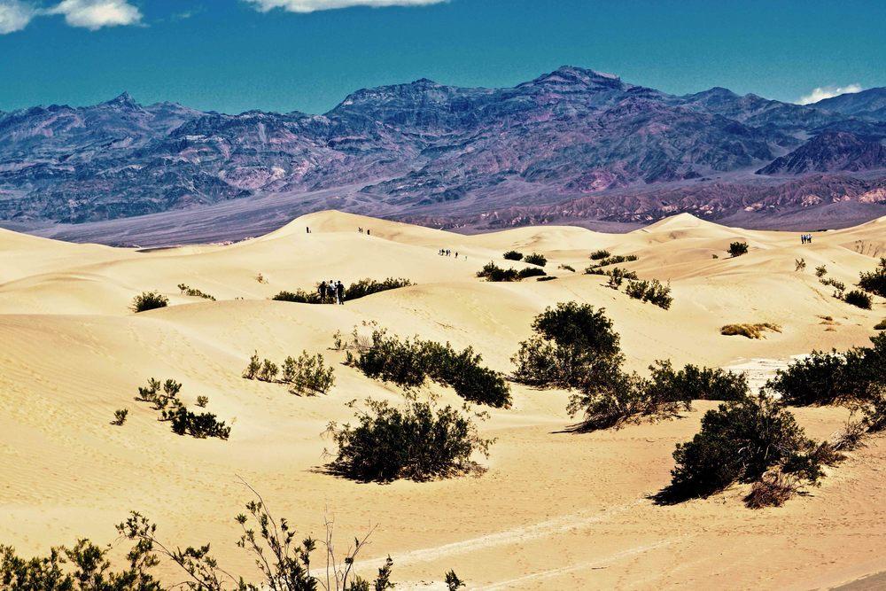 Mesquite Flat Sand Dunes, Death Valley National Park, April 2015