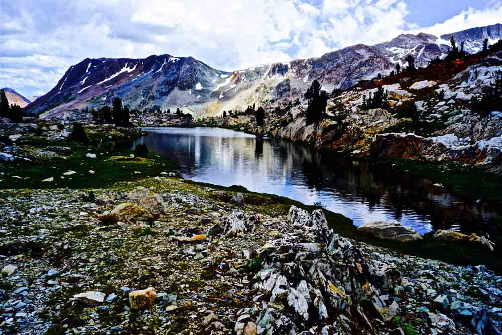 Inyo National Forest, July 2014