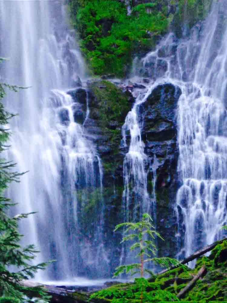 Proxy Falls, Oregon, July 2008