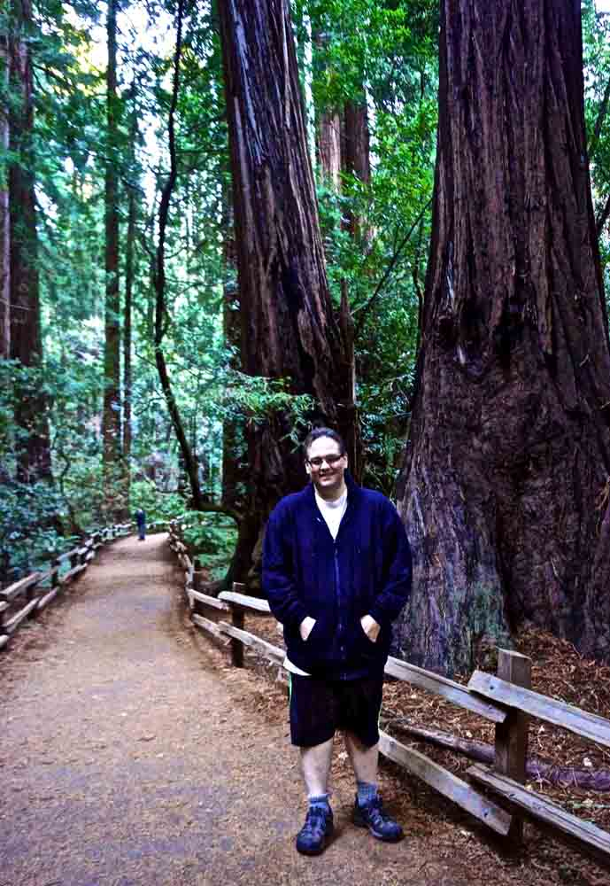 Muir Woods, California, January 2014